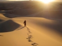 Image result for jesus in the wilderness